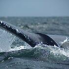 bull-whale by Alex Ruzaykin