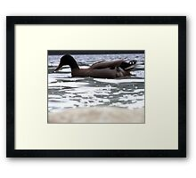 Lunchtime Companion Framed Print