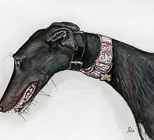 The Glance of a Greyhound by Elle J Wilson