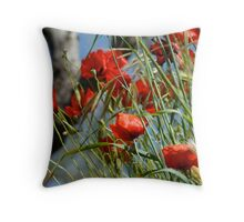 Tuscan poppy(in Tuscany -Italy) Throw Pillow