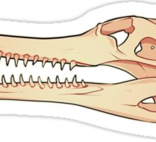 Gharial Skull Sticker