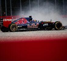 Formula 1 Max Verstappen  by Srdjan Petrovic