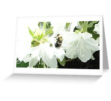 Bumble-Bee Greeting Card