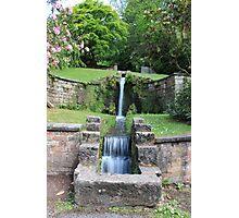 Garden stream Photographic Print