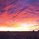 Mothers Day Sunrise - Chinchilla Qld by Beth  Wode