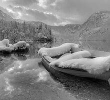 Lake Bohinj in Winter, Slovenia by Ian Middleton