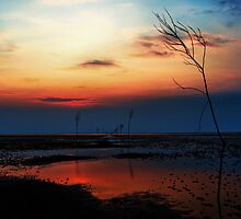 Sunset over  Mandø by kumari