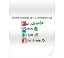 Building blocks for a peaceful mesclun salad (salad) Poster