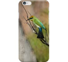 Rainbow Bee Eater Hunting iPhone Case/Skin