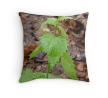 Greenery in the Forest Throw Pillow