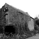 Overgrown Barn by Dave Godden
