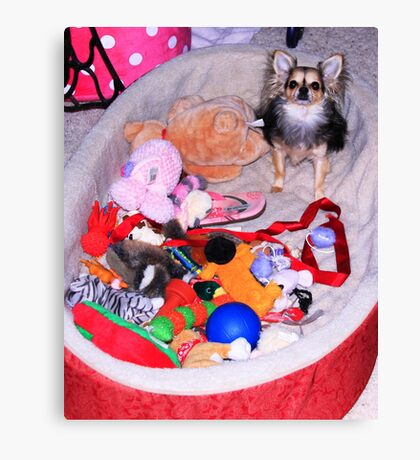 Toy Basket Canvas Print