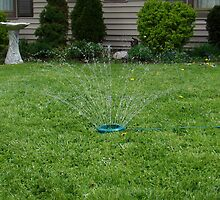Sprinkler Kicks Off Summer by Rebecca Mayglothling