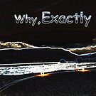 Why, Exactly! by cherie hanson