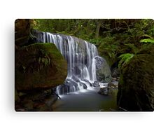 Leura Fun Canvas Print
