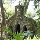 Hidden Grotto by Laurie Perry