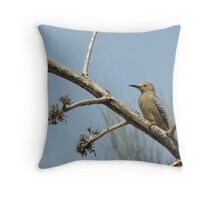Gila Woodpecker ~ Male Throw Pillow