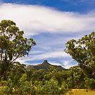 Mt Ningadhun by Werner Padarin