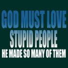 God Must Love Stupid People by Brian Walther