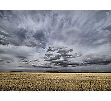 prairie perspective Photographic Print