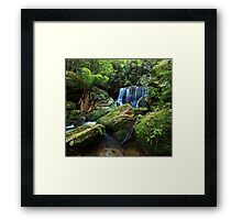 Moss on the Rock - Lurinda Falls  Framed Print