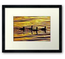 golden sunset lit water with ducks Framed Print