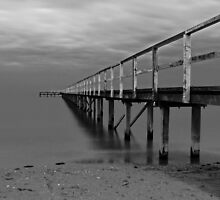 The Baths Pier BW by Damon Colbeck