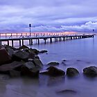 Sorrento Surf Club Pier  by Damon Colbeck
