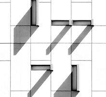 A Black and White Case by Robert Dettman