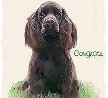 spaniels forever Banner Challenge by Cazzie Cathcart