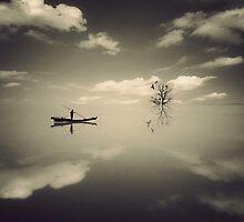 Dream Finder by arayo