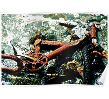 Rusted Bicycle Poster
