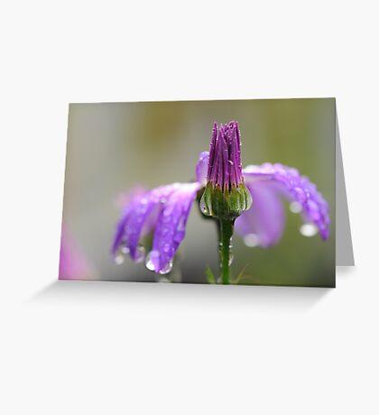 Fragile Beauty ~ Greeting Card