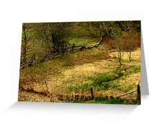 Natures Paint Brush............. Greeting Card