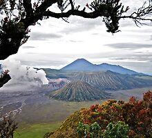 Mount Bromo by gerjen