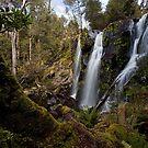 A Peek at Hidden Creek Falls by Kylie  Sheahen