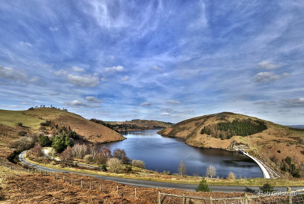 Llyn Clywedog, Powys, Wales by Bob Culshaw