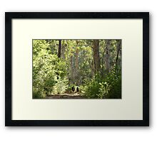 Into the Realm of the Giants Framed Print