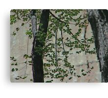 Impression of Wall and Tree Canvas Print
