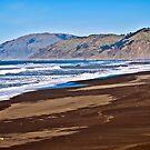 Petrolia Lighthouse Beach by Bryan D. Spellman