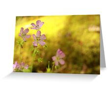 Carolina Cranesbill Greeting Card