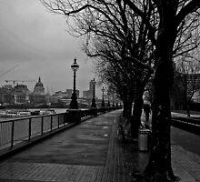 Thames Embankment London by Paul  Sloper