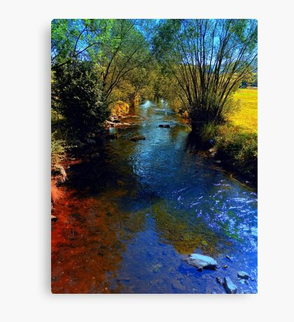 Vibrant river in autumn season Canvas Print