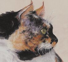 Calico Cat  by Pam Humbargar