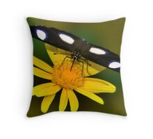 Diadem Butterfly on Yellow Flower Throw Pillow