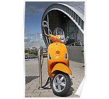 Orange & Sage Poster