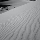 Late Afternoon, Mesquite Dunes by Clayhaus