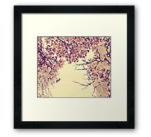 blossoms on top of me Framed Print