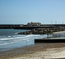 Lyme Regis Today by lynn carter