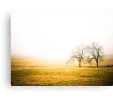 Twin Trees In Fog Field Canvas Print